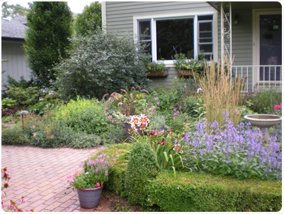Landscape Pruning and Design